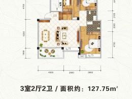 C2 多层洋房